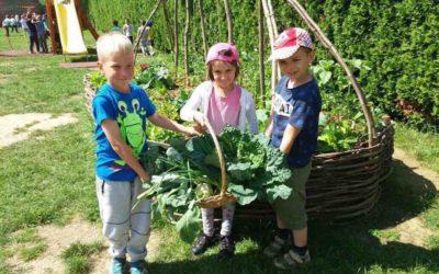 Najljepši školski vrtovi – HRT projekt