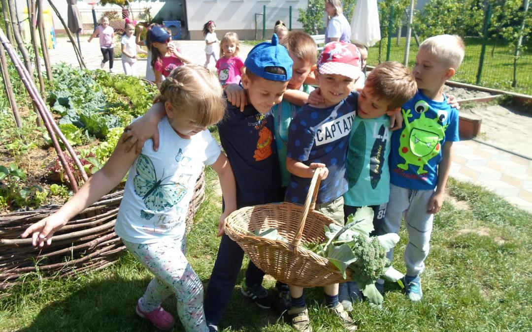 Dječji vrtić Lojtrica na natječaju udruge Biovrt