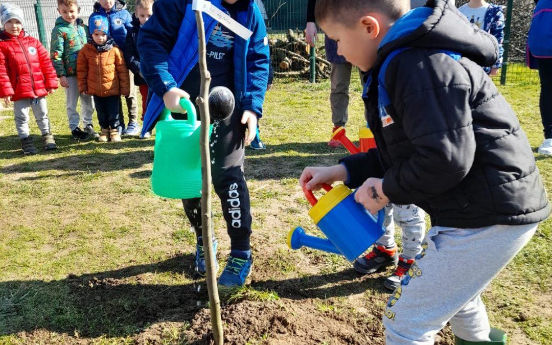 Sudjelovanje DV Lojtrica u građanskoj inicijativi Zasadi stablo, ne budi panj